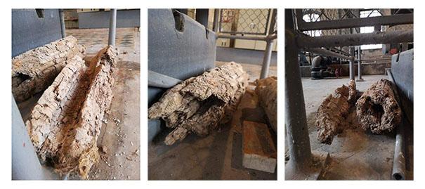 historyczna drewniana rura-605.jpeg