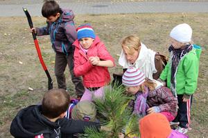 Galeria Światowy Dzień Drzewa